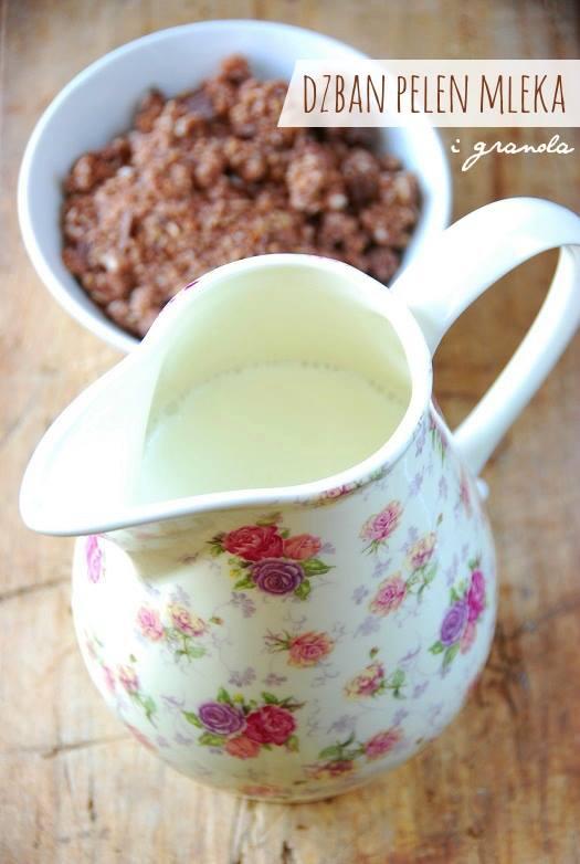 granola czekoladowa21